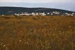 Grad u žitu (Gordan Topić Nia)