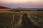 Put polja (Gordan Topić Nia)