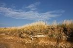 Trava (Gordan Topić Nia)