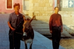 Jani: Dominik, magarac i Lekić Miloš
