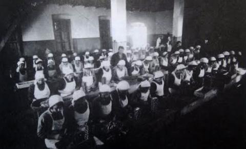 Tvornica sardina 1941.g.